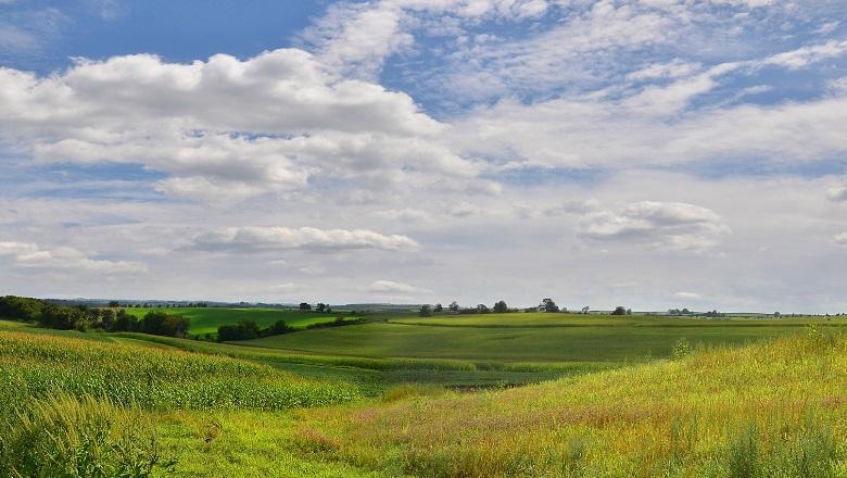 Rural Wisconsin scene